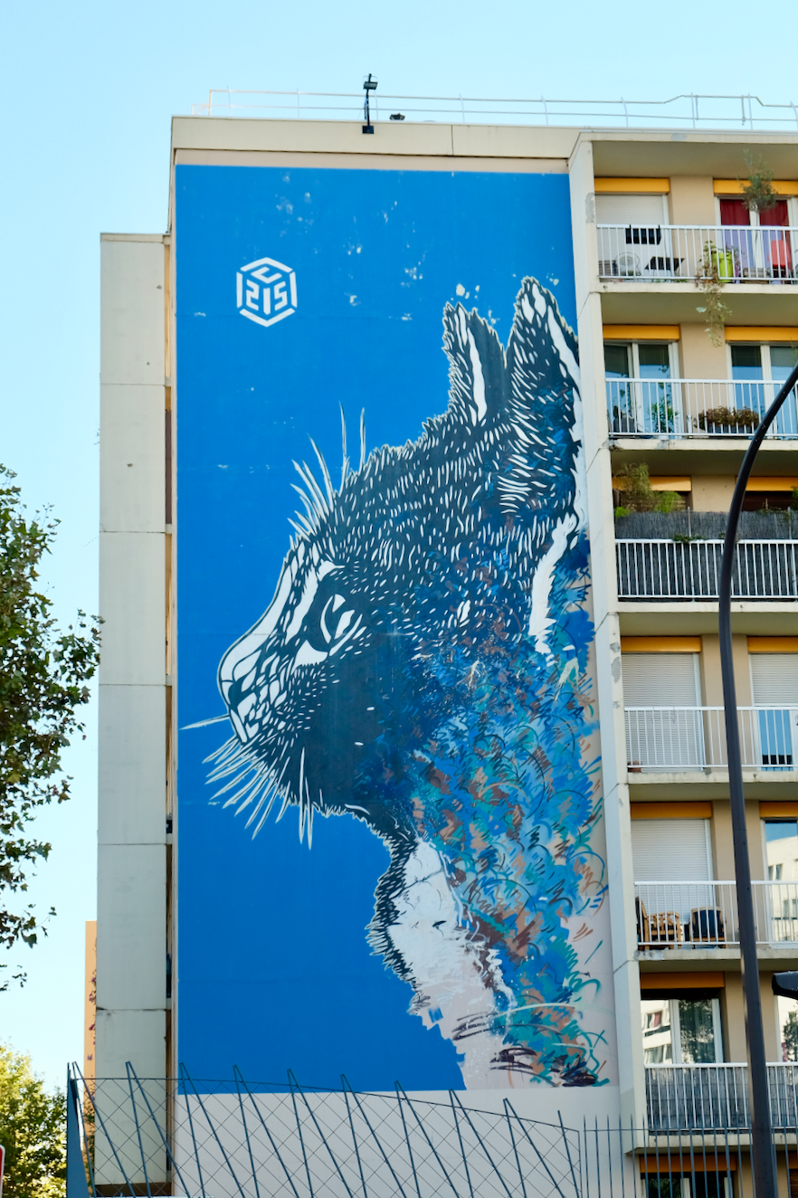 Street art paris 13 le chat c215