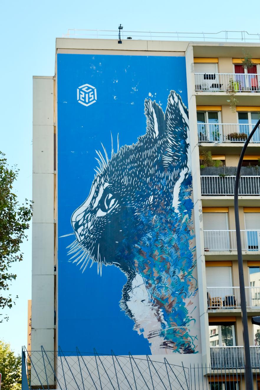 Street art paris 13 le chat c215