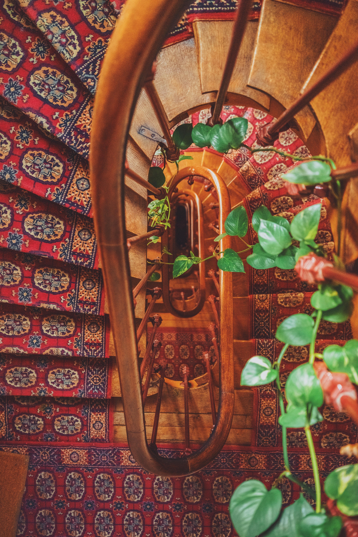 Escalier paris appartement familial